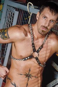 male muscle gay porn star Montaz Morgan | hotmusclefucker.com