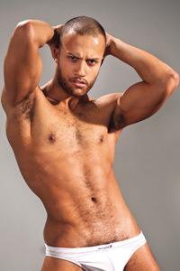 male muscle gay porn star Franco Ferrari | hotmusclefucker.com