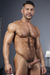 male muscle gay porn star Seth Santoro | hotmusclefucker.com
