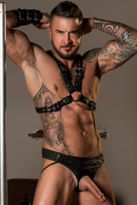 Picture of Dolf Dietrich