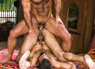 gay muscle porn clip: Arabesque - Huessein & Joey Russo & Sarib, on hotmusclefucker.com
