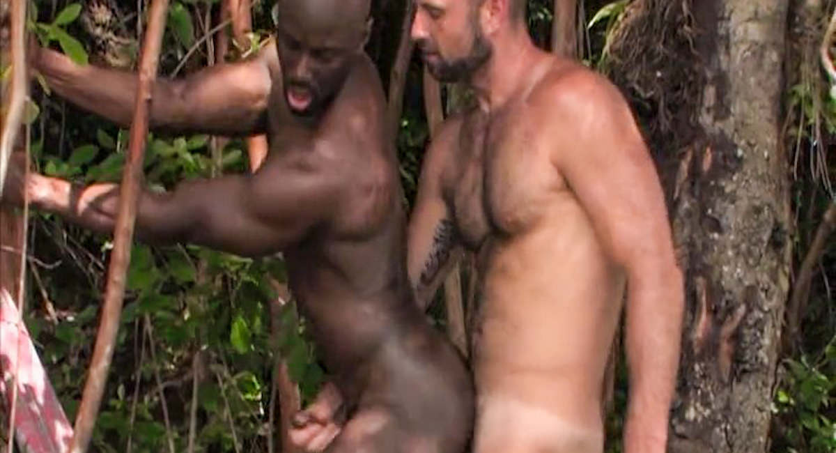 porn in african jungle