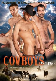Cowboys Part 2 DVD Cover