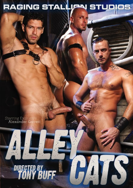 Alley Cats Dvd Cover