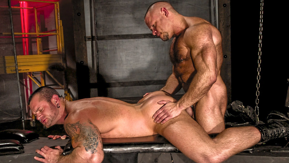 Gay muscle video sex clips