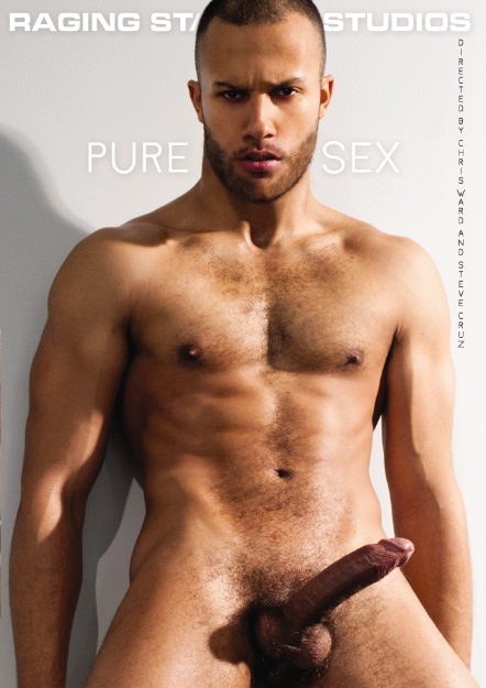 Pure Sex Dvd Cover