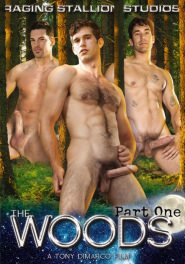 The Woods Part 1 DVD Cover