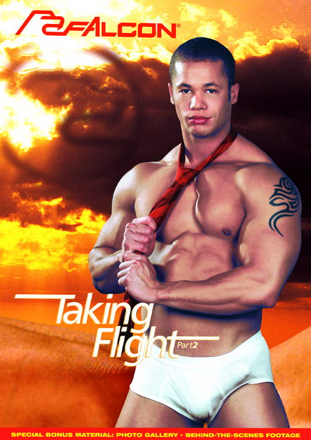 Taking Flight, Part 2 Dvd Cover