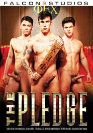 The Pledge DVD Cover