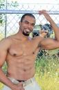 Boxer picture 9