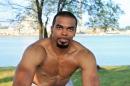 Boxer picture 22