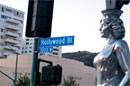 Road Trip, Vol. 14 - Hollywood picture 4
